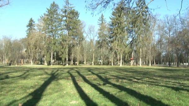 Zničený sad v žiarskom parku opäť zakvitne