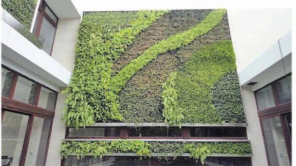 V Žiari má vzniknúť zelená stena