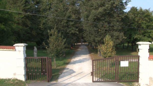 O stromy v historickom parku v Žiari sa starajú arboristi